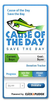 Nonprofit widget example from Click and Pledge